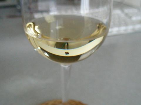 P5270040